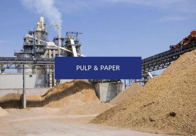 PULP & PAPER